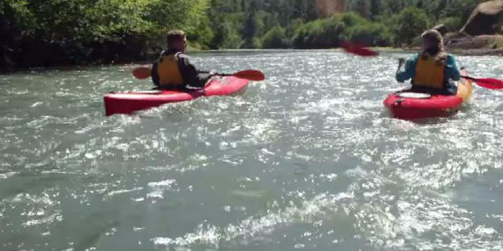 Kayakers on a river